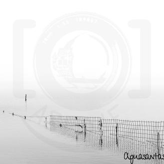 Espacio negativo - Alambrada en el agua