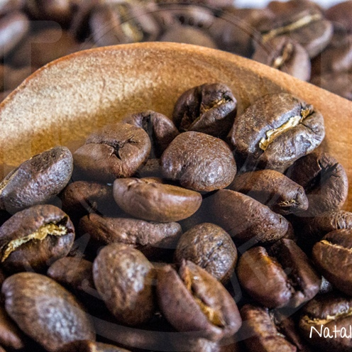 Textura_Aroma a café.jpg