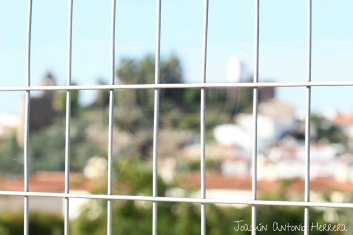 Participante050_foto2