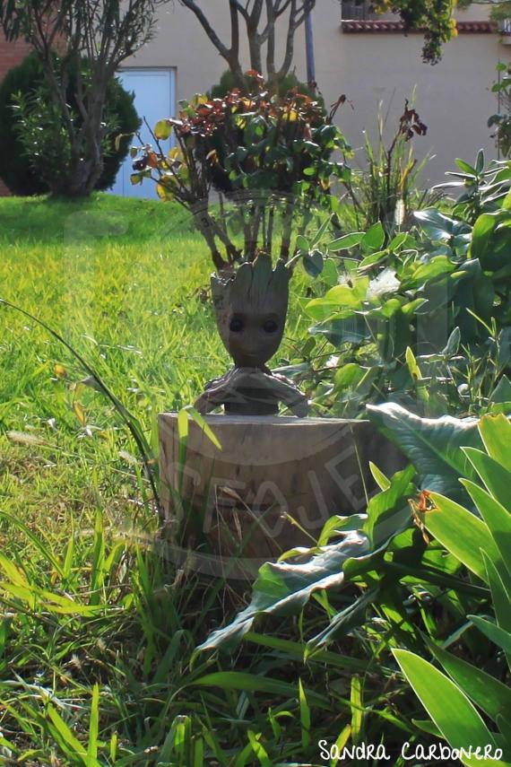 Perspectiva forzada - Groot floreciendo