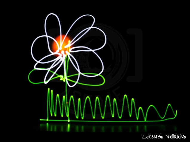 Light Painting - Flor