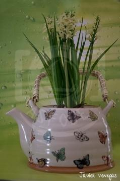 Inspirate en Madoz - Té de flor