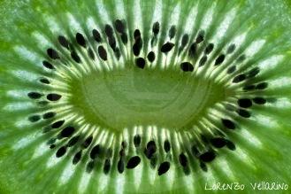 Frutas - Kiwi