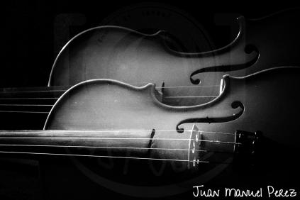 Lineas curvas - Violines
